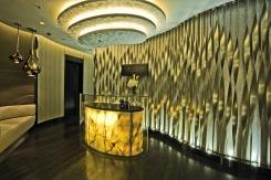 Ritz_Carlton_hotel_felons.wordpress.com (48)