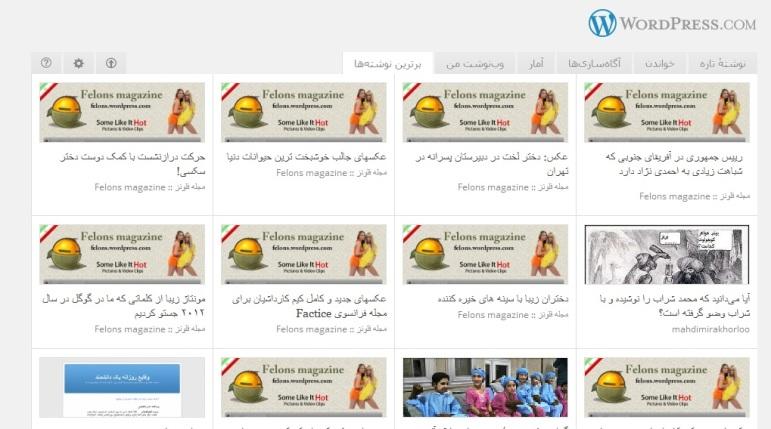 تسخیر سایت وردپرس فارسی توسط مجله فلونز