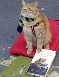 a street cat named bob book (1)