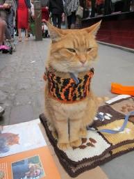 a street cat named bob book (17)