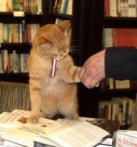 a street cat named bob book (19)