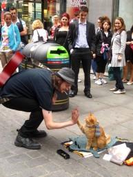 a street cat named bob book (26)