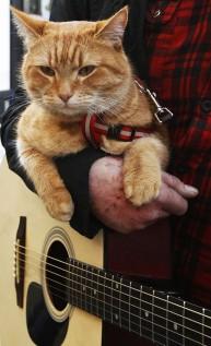 a street cat named bob book (29)