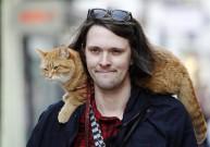 a street cat named bob book (3)