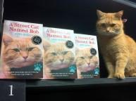 a street cat named bob book (9)