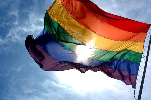 پرچم همجنس بازها