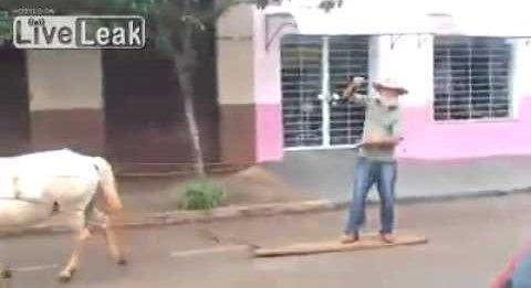 پیرمرد برزیلی و ساده ترین ارابه دنیا